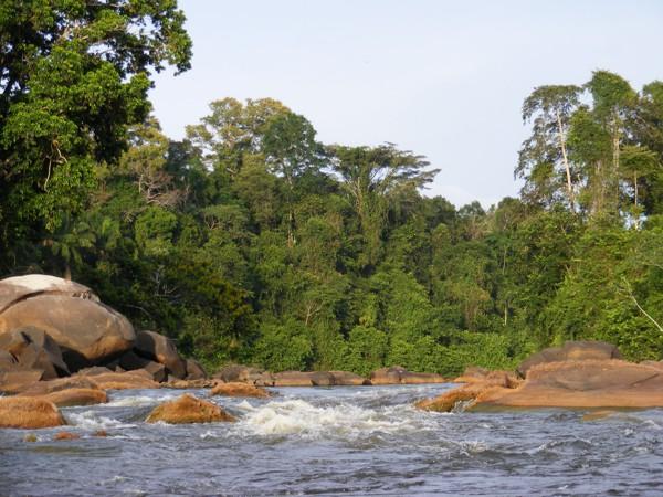 Isadou Suriname 022 stroomversnelling