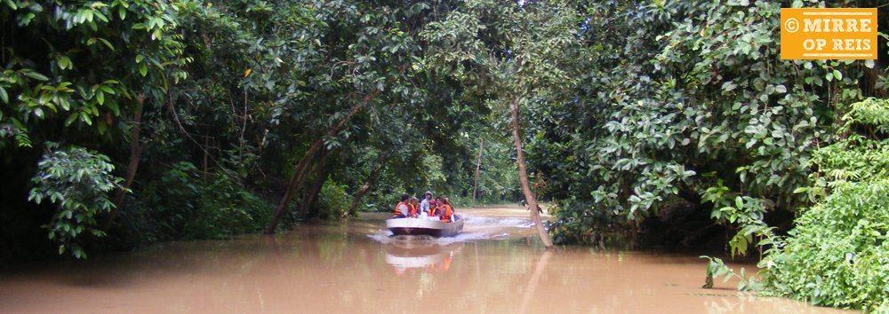 Borneo bezienswaardigheden: Kinabatangan