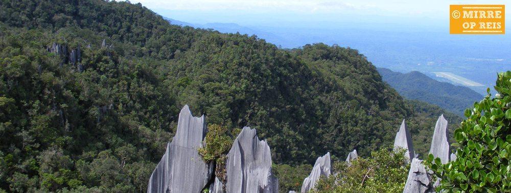 Borneo bezienswaardigheden: Mulu