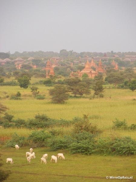 Bagan Myanmar 062
