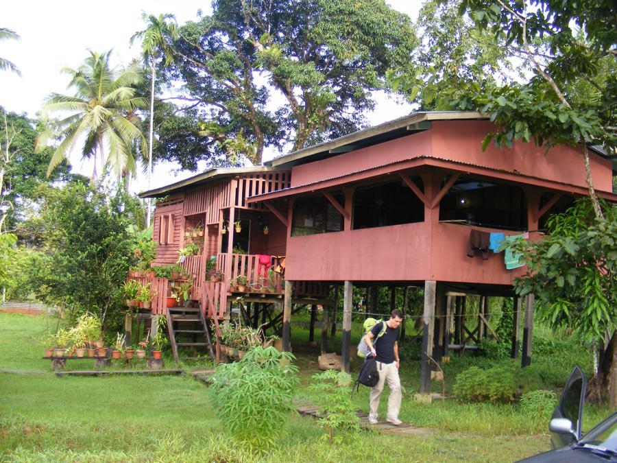 Kinabatangan Borneo 431