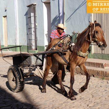 Cuba blog: paardenkar Trinidad