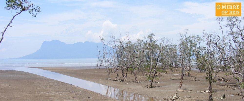 Borneo bezienswaardigheden: Bako