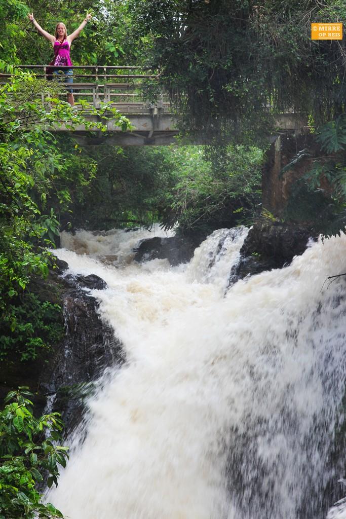 Iguazu watervallen 010