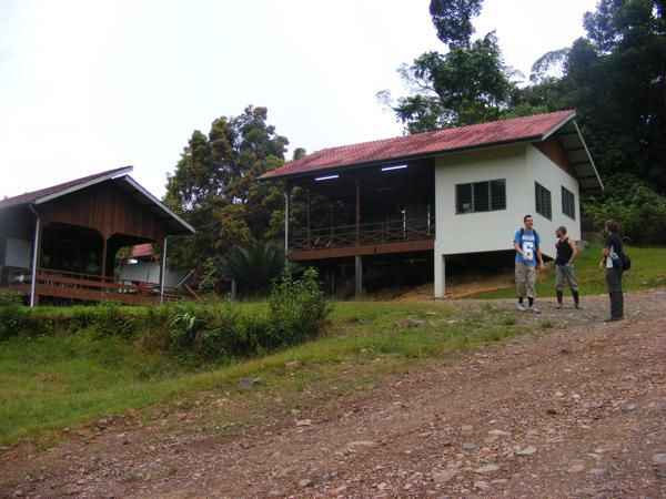 Danum Valley Field Center 339