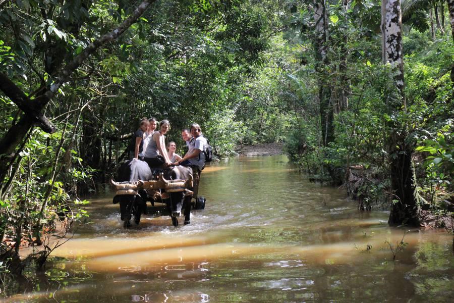 Baracoa Cuba 441