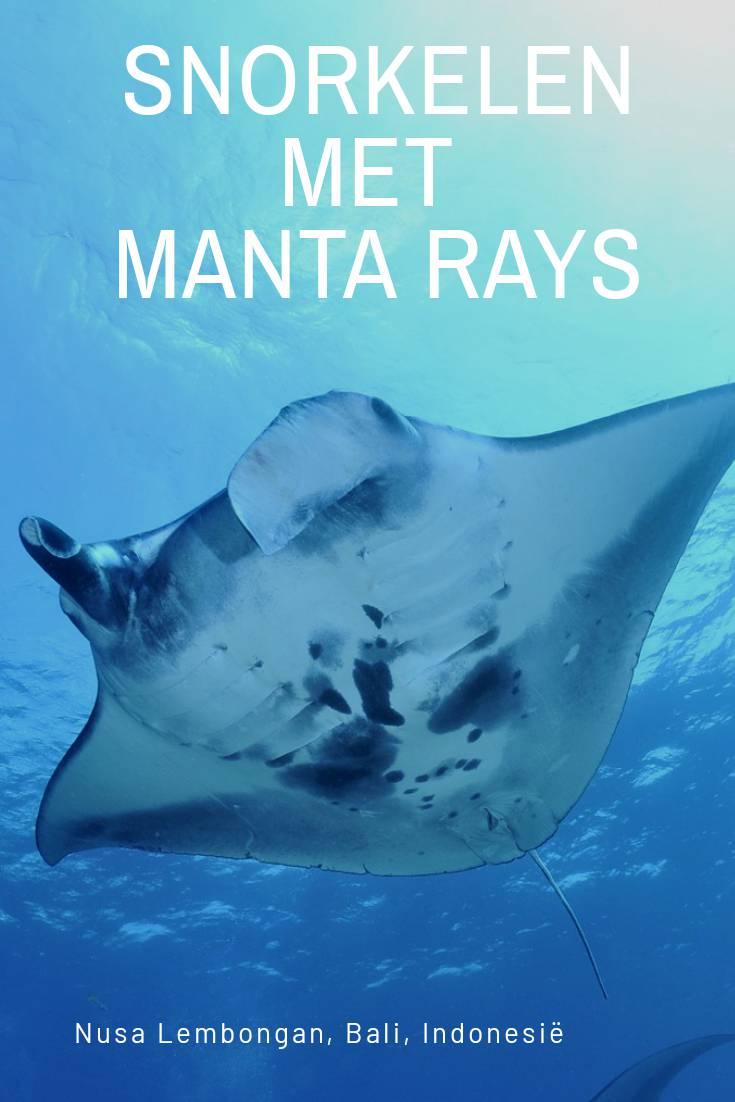 Snorkelen met Manta Rays op Nusa Lembongan