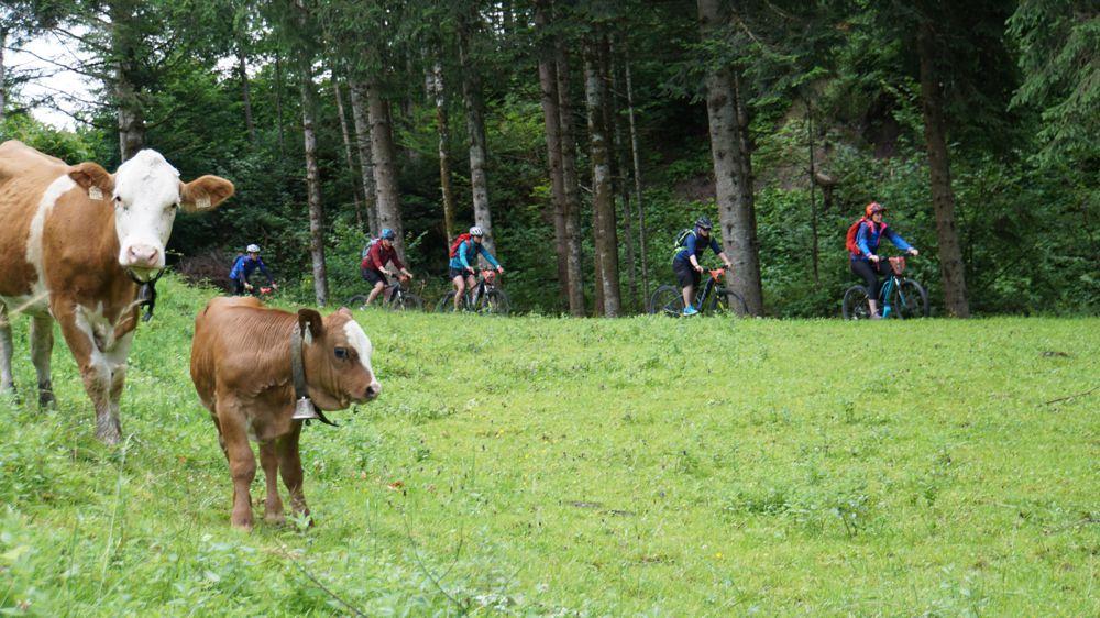 e-mountainbike tocht Oostenrijkse Alpen 006