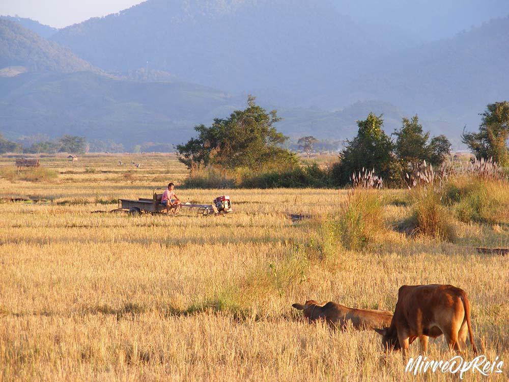 Laos uitgelicht