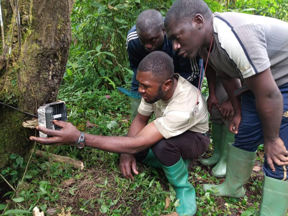 Kameroen – plaatsen van een camera tijdens een training