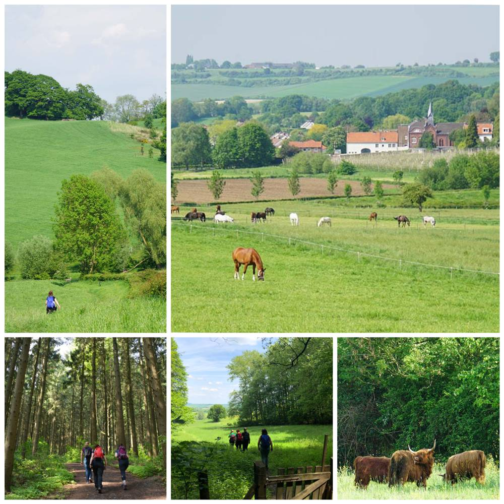 Vaals Limburg Collage wandeling