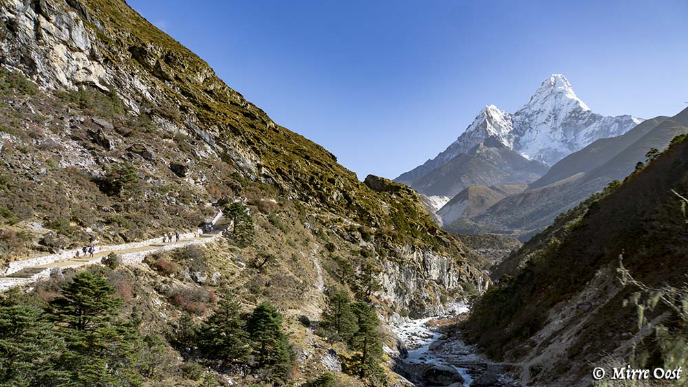 Nepal-421-brug